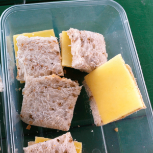 picture of a cheese sandwich in a plastic tray